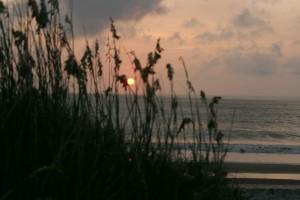 sunrise, national park, reeds, coastline, water