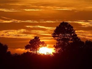 sunrise, Africa