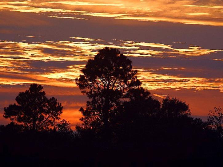 พระอาทิตย์ขึ้น ตอนเช้า