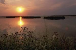beau, coucher du soleil, lac