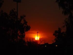 Bushfire, solnedgang