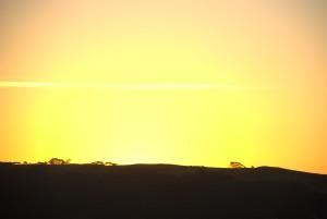 up-close, sunset