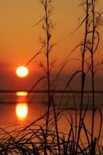 evening, Sun, reflection