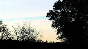 clôture, coucher de soleil