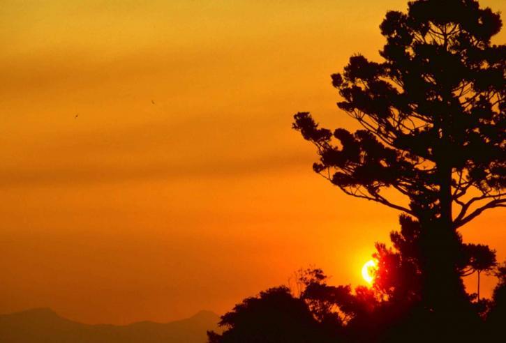 Lamington národný park, západ slnka