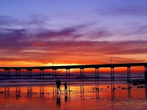 ocean, beach, sunset