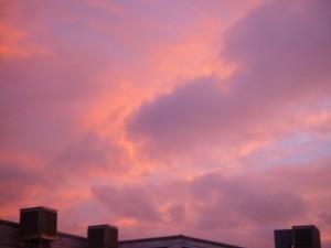 rosa, nubes, puesta del sol