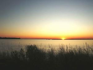 Einstellung, Sonne, Sumpf