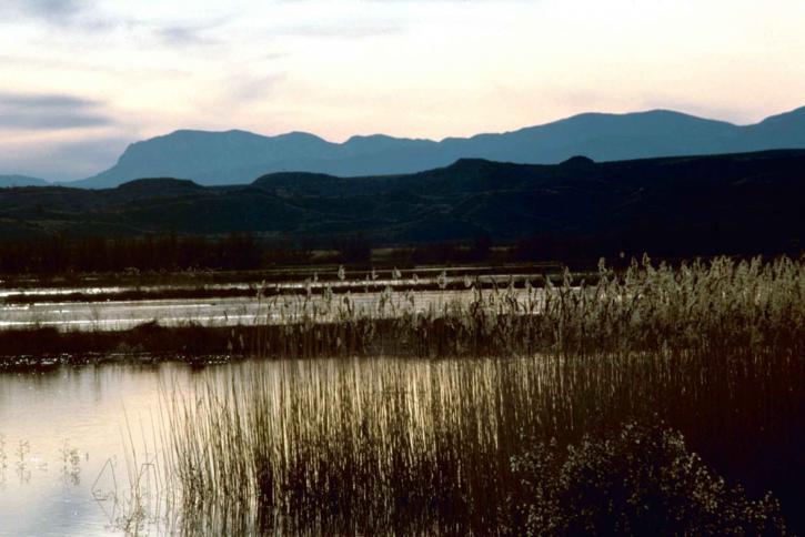 coucher du soleil, Bosque, Apache, national, réserve