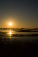 sunset, park, golden sky, water reflection
