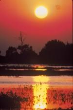 coucher du soleil, rouge, burd, scenics, paysage