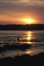 coucher du soleil, réfléchi, ouvert, l'eau, l'imbrication, boîte, au premier plan, loin, rivage, fond