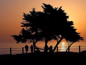 sunsets, Jolla