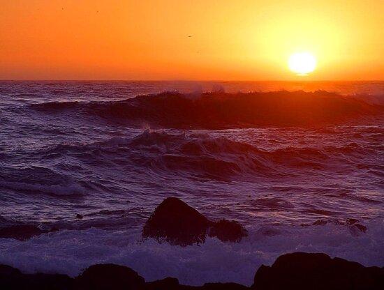 sunsets, beach