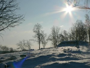 sunshine, snowy, tree, hill