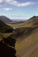 Arctic, wilderness, refuge, valley, summer