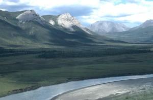 chandalar, river, valley, summer