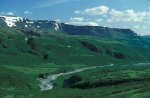 lefthand, valley, wilderness, area, summer