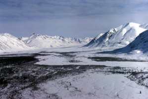 Arctic, winter, landscape