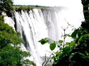 spectacular, Victoria, falls, vantage, point, forest, Zambia