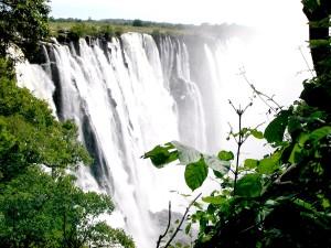 spectaculos, Victoria, cade, vantage, punct, pădure, Zambia