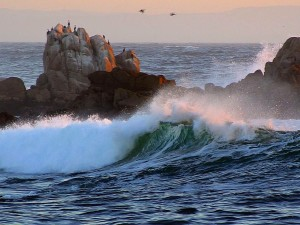 asilomar, beaches, waves, ocean, dusk