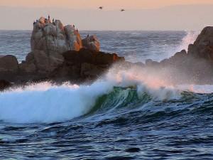 asilomar, playas, ondas, océano, oscuridad
