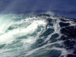 wave, ocean, wind