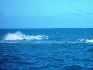волна, открытое, море