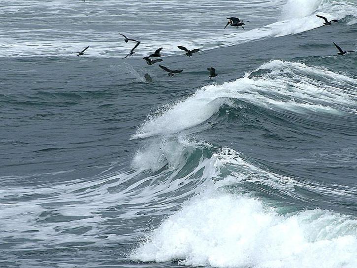 waves, background