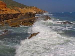 bølger, surf