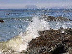 vlny striekajúcej, oceán, morské riasy, pláže
