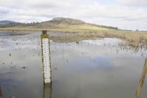 water, control, structure, gauge, wetlands