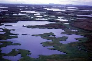 aerial, hazen, bay, wetlands