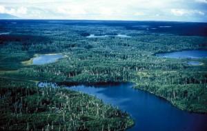 aérien, plaines, lacs, Kenai, refuge