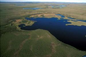 aerial, national park, wetlands
