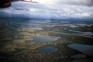 aerial, wetlands, plane