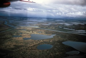 antenne, wetlands, vliegtuig