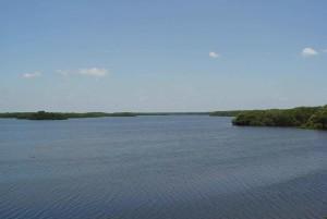 calme, eau, lac, zone humide