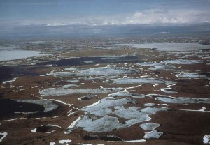 givre, de glace, petit, lacs, zones humides, la perspective aérienne