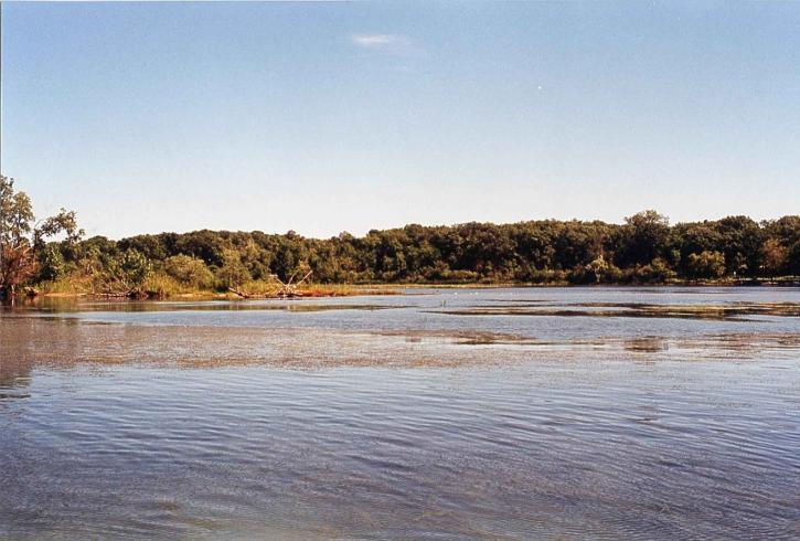 Hennepin, marsh, litoral, Detroit, Rio, interwilderness, refúgio
