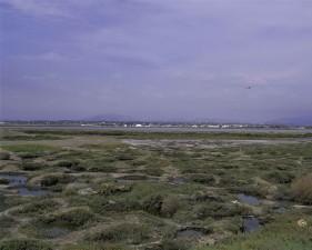 huge salt marshes, surrounding, San Diego, bay
