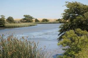 lindsey, Slough, Sacramento, rivière, bassin