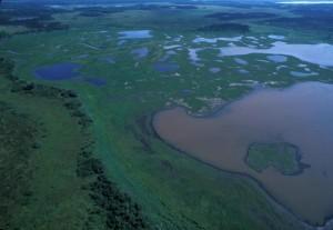boue, rivière, secteur, aérien, marais, zone humide