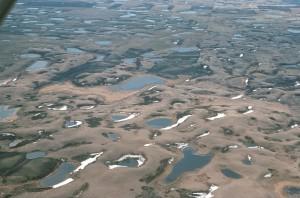 nids de poule, les zones humides