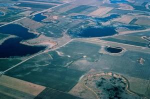 prairie, nids de poule, des zones humides, la perspective aérienne