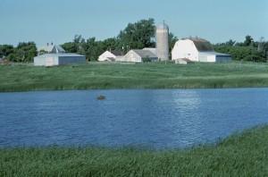 Ranch, umgeben, Sumpf