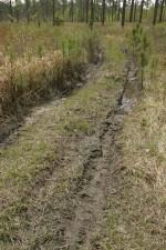 riders, tresspass, refuge, damage, vegetation, habitat