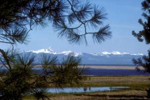 pittoresque, Klamath, marais, montagne, Thielsen, fond