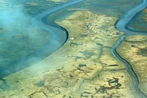 marais, rivière, delta